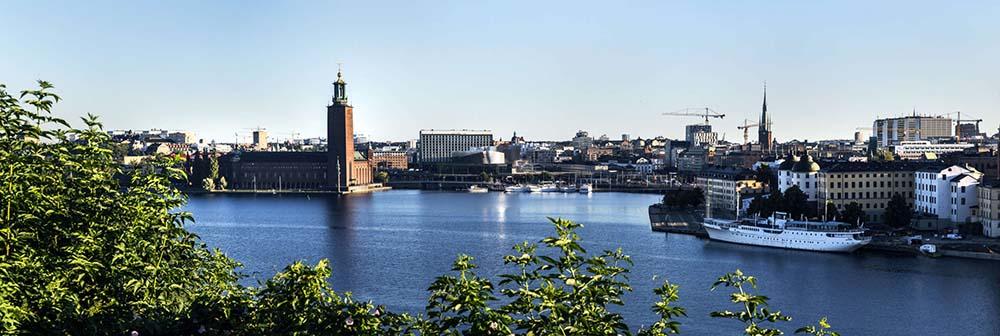 Vy över Stockholm från Monteliusgatan